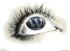 Internetera.net WordPress eye logo TecnoEnt custom